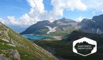 Randonnée & observation des oiseaux de haute montagne